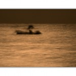 fine art, fotografia interiorismo, fotografia de arte, nature photography, beach & tropical pictures,